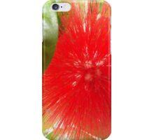 Flower Close-Up, Ford Foundation, Indoor Garden, New York City iPhone Case/Skin
