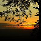 Sunset at Ngorongoro Crater Sth Africa by Maureen Clark