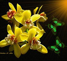 ~ ORCHID JOY ~ by Madeline M  Allen