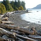 PORTEAU COVE B.C.CANADA by DIANEPEAREN