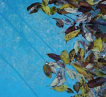 Above and Below by eelsblueEllen