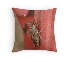 Stinkbug II Throw Pillow