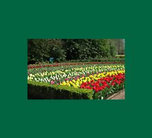 Tulips of Many Colours - Keukenhof Gardens Womens Fitted T-Shirt