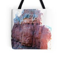 Multi-Colored Hoo Doos Tote Bag