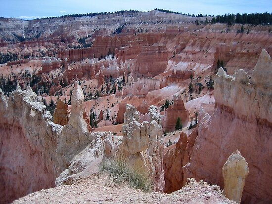 Rock Formations at Bryce Canyon by Laurie Puglia