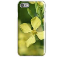 Wild Radish iPhone Case/Skin