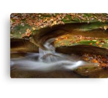Fall Creek Gorge - Water Slide Canvas Print