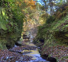 Fall Creek Gorge - Looking Downstream by Jeff VanDyke