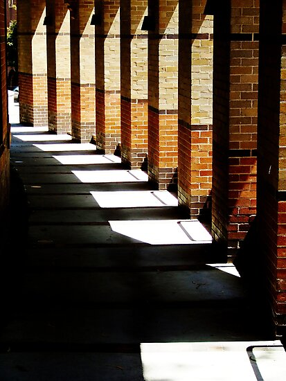 Shadows and Light by Paul Todd