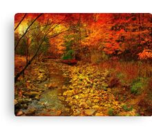 A stone's throw from beauty Canvas Print