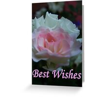 Any Occasion Greeting Card