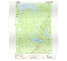 Maine USGS Historical Map Farrow Mountain 105132 1988 24000 Poster