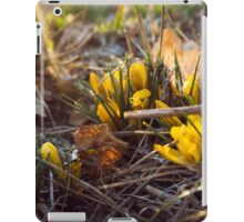 Early Spring Flowers iPad Case/Skin