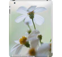 'Scuse me while I kiss the sky, ii iPad Case/Skin