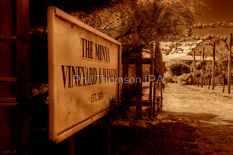 """""""The Minya Entrance"""" by Phil Thomson IPA"""