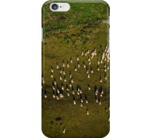 Sheep gathering along fence from the air iPhone Case/Skin