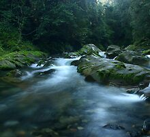 Williams River, Barrington Tops, NSW, Australia by SkyPhotos
