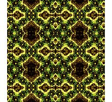 Brown and Green weave Photographic Print