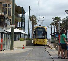 Tram - Glenelg, Adelaide Australia by Joanna Roser