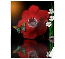 ~ ANEMONE REFLECTIONS ~ Poster