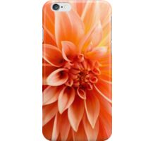 Glorious sun-burst orange chrysanthemum iPhone Case/Skin