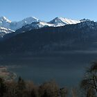 Above Interlaken, Switzerland by grubb1980
