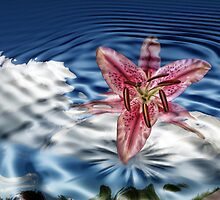 Liquid Flower XIII by EbelArt