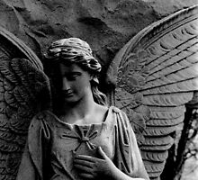 Angel by apertureadjust