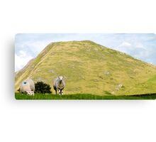 Thorpe Cloud - The Peak District Canvas Print