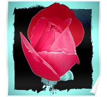Love Rose Poster