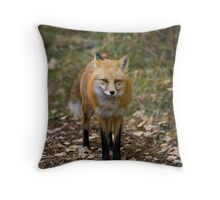 The Red Fox Monkey On My Back Throw Pillow