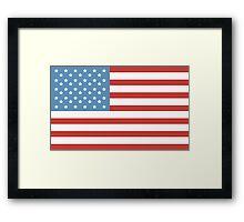Flag Of America Framed Print