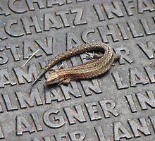 Lizard on War Memorial by grubb1980