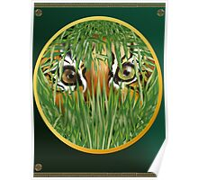 Tiger In The Grass Poster