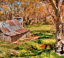 High Country Hut by Peter Hocking