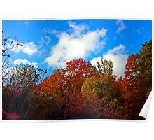 Fall in Uppera  Michigan Poster