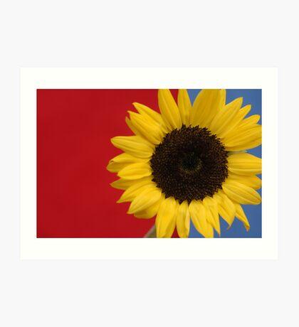 Primary Sunflower Art Print