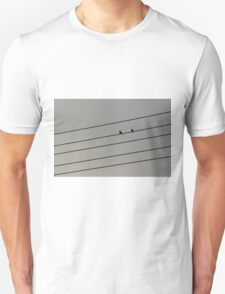 The birds on wire T-Shirt