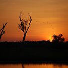 Sunset, Kakadu National Park,  Northern Territory, Australia by Adrian Paul