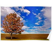An Autumn Tree Poster