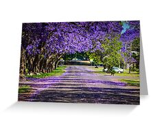 Jacaranda Magic Greeting Card