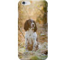 English Springer Spaniel 1 iPhone Case/Skin