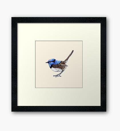 Little Wren in Natural Framed Print