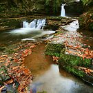 Mystic Pools: South Wales by Angie Latham