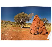 Termite Mound. Poster