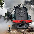 Steamranger by Bill  Robinson