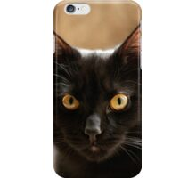 Black cat cosy in bed iPhone Case/Skin