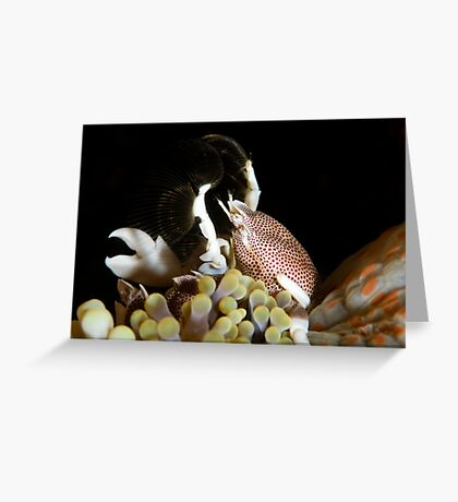 Gimme Gimme Gimme! Greeting Card