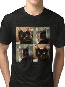 Black cat and Tortoiseshell cat  Tri-blend T-Shirt