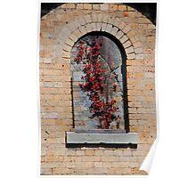 Gladesville Hospital - Window Vine Poster